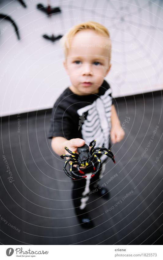 Kaukasischer kleiner Junge, der mit Spinnenspielzeug spielt Mensch Kind Lifestyle Spielen Angst Kindheit Fröhlichkeit Neugier Insekt heimwärts Kleinkind