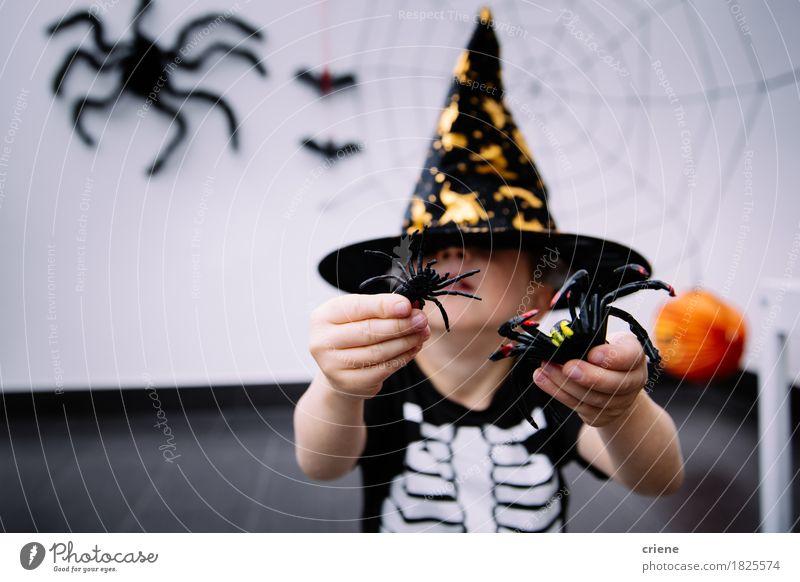 Kleinkind mit Halloween-Kostüm und Spinne spielt zu Hause Mensch Tier Freude Herbst Lifestyle Junge Spielen Angst Dekoration & Verzierung Kindheit niedlich
