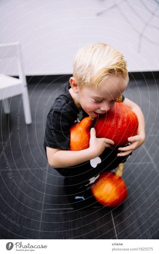 Tragende Kürbise des kleinen Kleinkindjungen für Halloween zu Hause Kind Freude Herbst Lifestyle Junge Spielen Kindheit Lächeln Gemüse heimwärts tragen