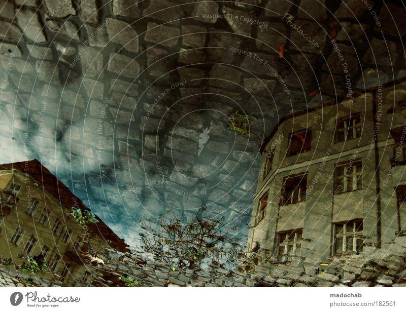 traumzauberzaun Farbfoto Gedeckte Farben Außenaufnahme Unterwasseraufnahme Experiment abstrakt Muster Strukturen & Formen Menschenleer Textfreiraum oben