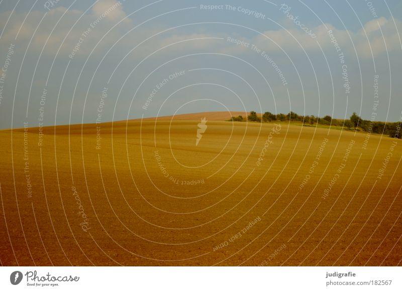 Acker Farbfoto Außenaufnahme Tag Natur Landschaft Erde Himmel Wolken Feld Wärme ästhetisch Idylle ruhig Landleben Strukturen & Formen Hügel weich
