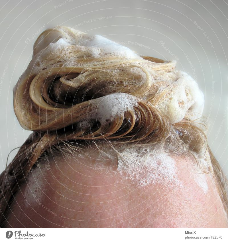 Sahnehaube Innenaufnahme Nahaufnahme Detailaufnahme Textfreiraum oben Textfreiraum unten schön Körperpflege Haare & Frisuren Wellness Schwimmen & Baden
