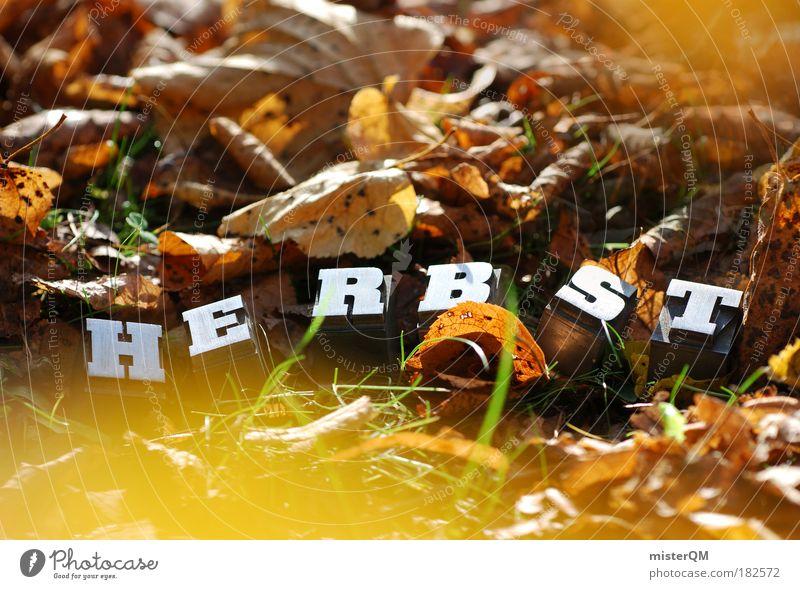 Bodenhaltung. Natur Herbst Kunst Park Wetter Zufriedenheit Wind Klima Schriftzeichen ästhetisch Spaziergang Buchstaben Schönes Wetter Kreativität verstecken