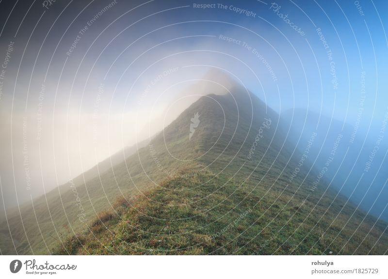 Bergspitze im dichten Nebel, Alpen Ferien & Urlaub & Reisen Berge u. Gebirge Natur Landschaft Himmel Herbst Wetter Gras Wiese Felsen blau grün Gelassenheit