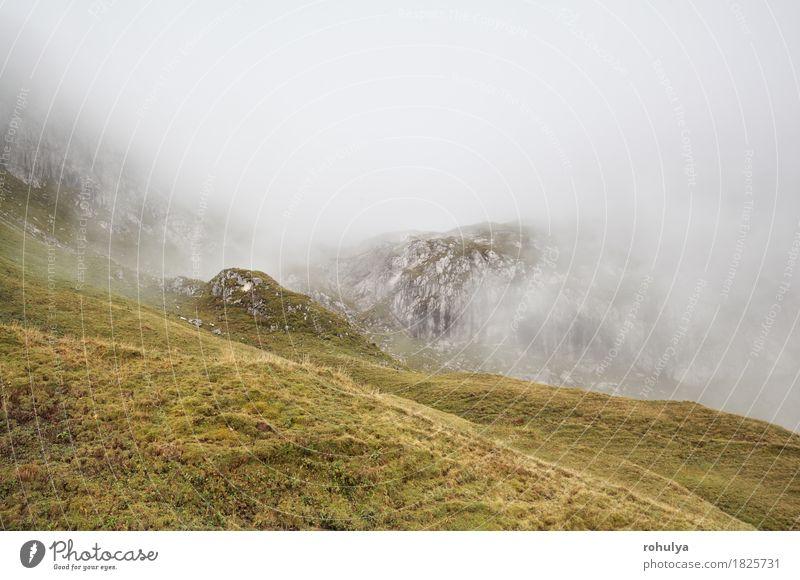 felsige Berge im dichten Nebel, Alpen, Deutschland Ferien & Urlaub & Reisen Berge u. Gebirge wandern Natur Landschaft Herbst Wetter Wiese Felsen Stein wild