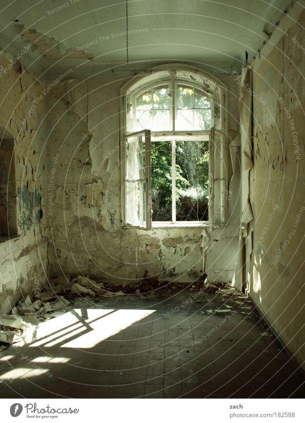 Mach es zu Deinem Projekt Farbfoto Innenaufnahme Textfreiraum unten Tag Schatten Sonnenlicht Zentralperspektive Wohnung Haus Renovieren Raum Ruine Gebäude Mauer