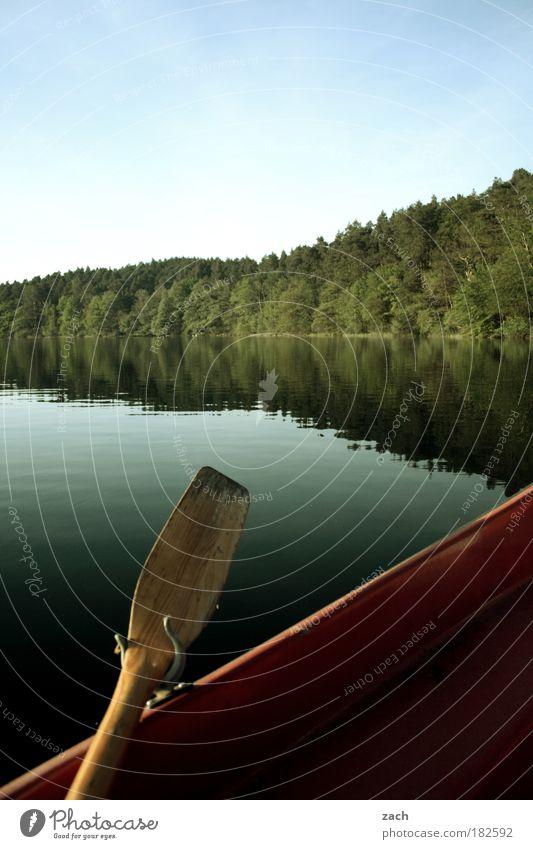 In 5 Monaten ist Frühling Natur Baum Pflanze ruhig Erholung Bewegung Holz See Landschaft Zufriedenheit Wasserfahrzeug Küste Umwelt Seeufer Schönes Wetter