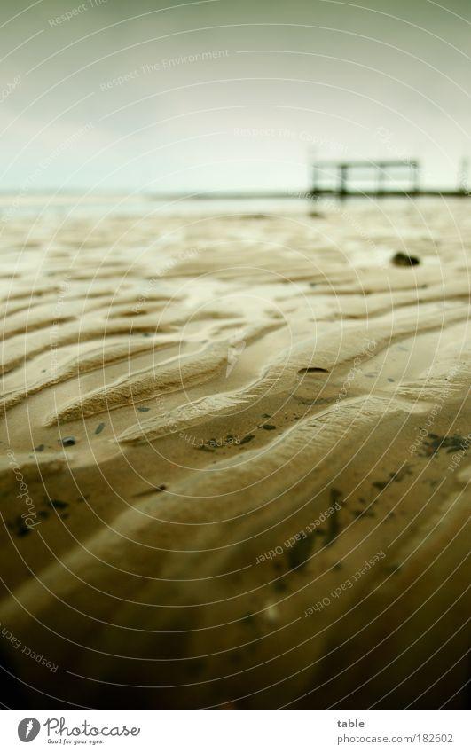 the beach Natur Wasser Meer Ferien & Urlaub & Reisen Einsamkeit dunkel Erholung Gefühle Sand Wellen Küste Umwelt Erde bedrohlich Klima