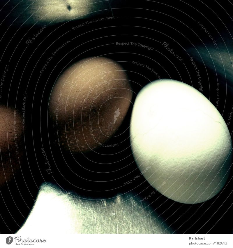 rollei. weiß Ernährung braun Metall Lebensmittel Kochen & Garen & Backen rund Metallwaren einzigartig machen Frühstück Ei Tier Bioprodukte Topf hart