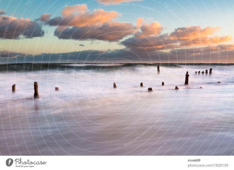 Die Ostseeküste an einem stürmischen Tag Erholung Ferien & Urlaub & Reisen Strand Meer Natur Landschaft Wasser Wolken Sturm Küste Holz Romantik Idylle Tourismus
