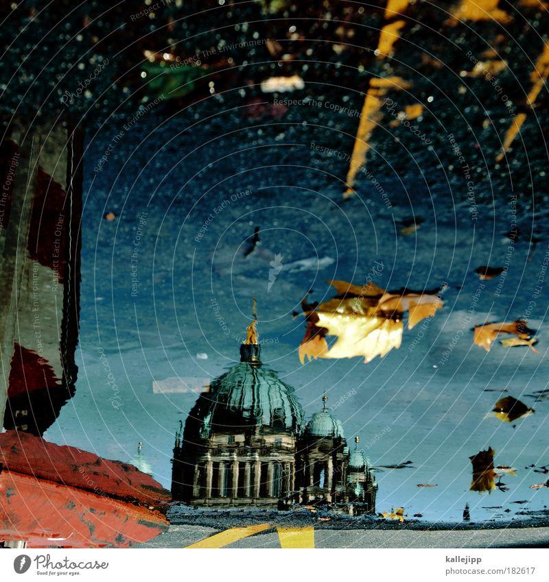 wasserschloss Reflexion & Spiegelung Wasser Stadt Ferien & Urlaub & Reisen Blatt Straße Berlin Herbst Verkehr Ausflug Tourismus Kirche Dach Burg oder Schloss Außenaufnahme Dom