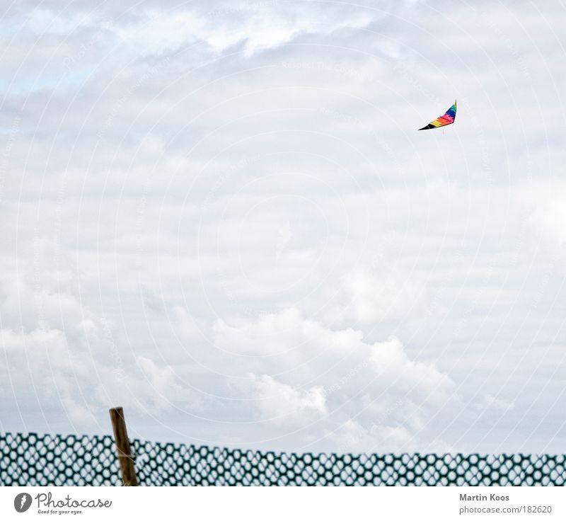 Flugobjekt Strand Freude Wolken Herbst Spielen oben Freiheit Luft Wetter Wind Freizeit & Hobby fliegen hoch Geschwindigkeit Fröhlichkeit Lifestyle