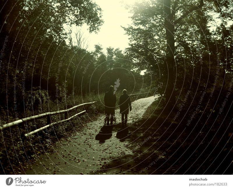 Den ganzen Stolz vor sich herschieben Mensch Frau Mann Natur Erwachsene Umwelt Herbst Wege & Pfade Glück Garten Park Zufriedenheit Zukunft Sicherheit
