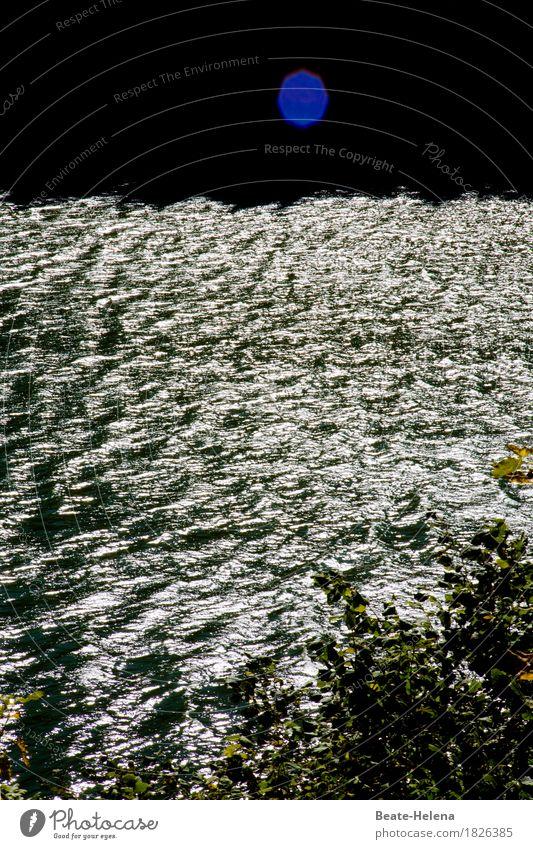 Wasser-spiegel-ei Wasserkraftwerk Umwelt Natur Landschaft Wassertropfen Himmel Wetter Schönes Wetter Baum Flussufer Dorf Sehenswürdigkeit glänzend