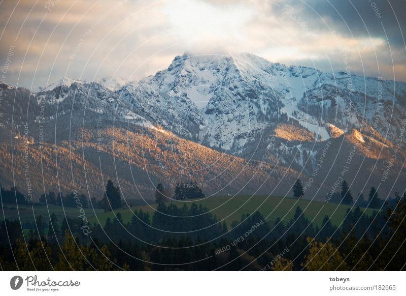 Heidi, Heidi... Natur Ferien & Urlaub & Reisen Wolken Wald Umwelt Berge u. Gebirge kalt Schnee Feld Freizeit & Hobby Tourismus Ausflug ästhetisch Alpen Gipfel Hügel