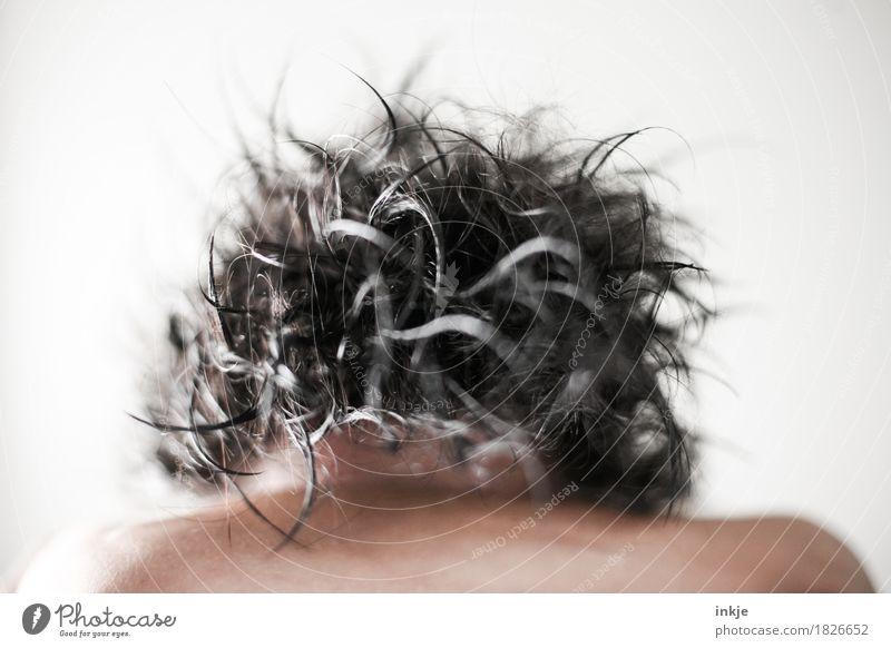 Schopf Körperpflege Haare & Frisuren schwarzhaarig grauhaarig kurzhaarig Wuschelkopf Haarsträhne nass durcheinander Vor hellem Hintergrund Haarschopf Farbfoto