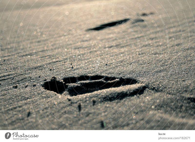 Strandschritt Wohlgefühl Erholung Fuß Sand Sonnenlicht Schönes Wetter Fußspur gehen frei braun ruhig Bewegung Ferne Barfuß Gedeckte Farben Außenaufnahme