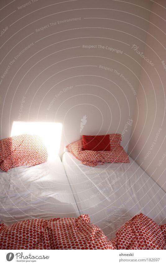 Guten Morgen! weiß rot träumen hell Raum Zusammensein Wohnung Bett weich Häusliches Leben Warmherzigkeit Innenarchitektur Morgendämmerung Geborgenheit