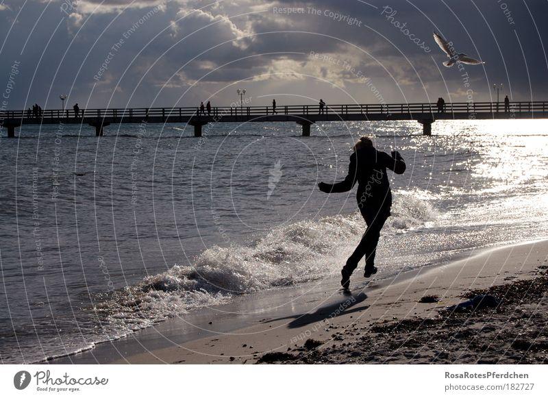 frei sein Meer Sand Strand Möwe Vogel Schatten Wellen Brücke Himmel Wolken rennen Fröhlichkeit dunkel Freiheit Ferien & Urlaub & Reisen Stein