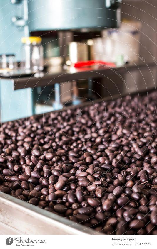 Verpackung Oliven in der Fabrik Frucht Design Industrie Paket frisch natürlich oliv Lebensmittel Vakuum Wasserfarbe Maschine Hintergrund Gesundheit Zutaten