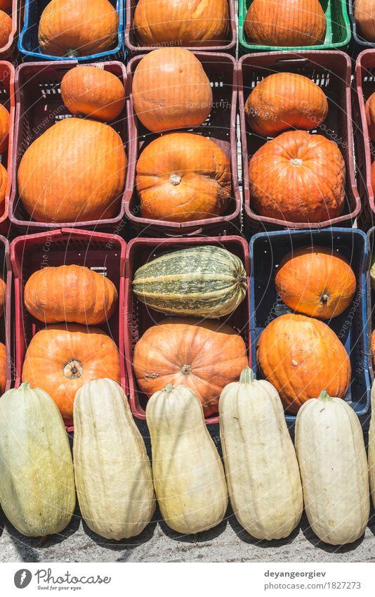 Kürbisse auf dem Markt Gemüse Dekoration & Verzierung Erntedankfest Halloween Herbst frisch fallen Hintergrund Lebensmittel Bauernhof orange Fleck Ackerbau