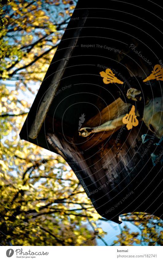INRI Farbfoto Außenaufnahme Tag Unschärfe Froschperspektive Vorderansicht Blick nach unten geschlossene Augen Jesus Christus Skulptur Figur Statue Ikonen Baum