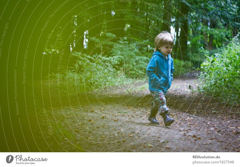 Unterwegs im Wald Mensch Kind Natur Baum Umwelt Wege & Pfade natürlich Bewegung Junge klein Glück Freiheit gehen Kindheit laufen