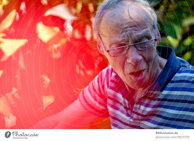 manni Mensch maskulin Mann Erwachsene Männlicher Senior Kopf Gesicht 1 60 und älter Umwelt Natur Sommer Schönes Wetter Garten T-Shirt Brille grauhaarig
