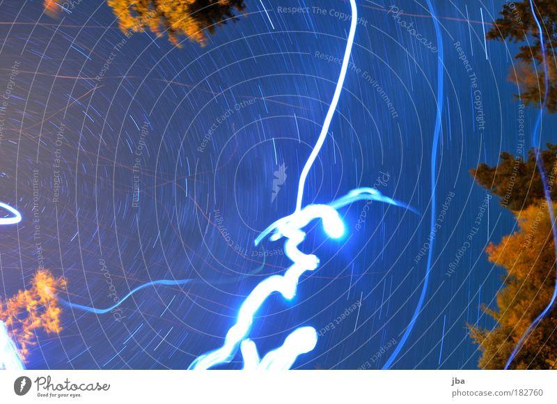 Lichtquellen Natur Himmel Baum Ferien & Urlaub & Reisen Blatt Lampe Erholung Herbst Bewegung Freiheit Holz träumen Luft warten Stern fliegen