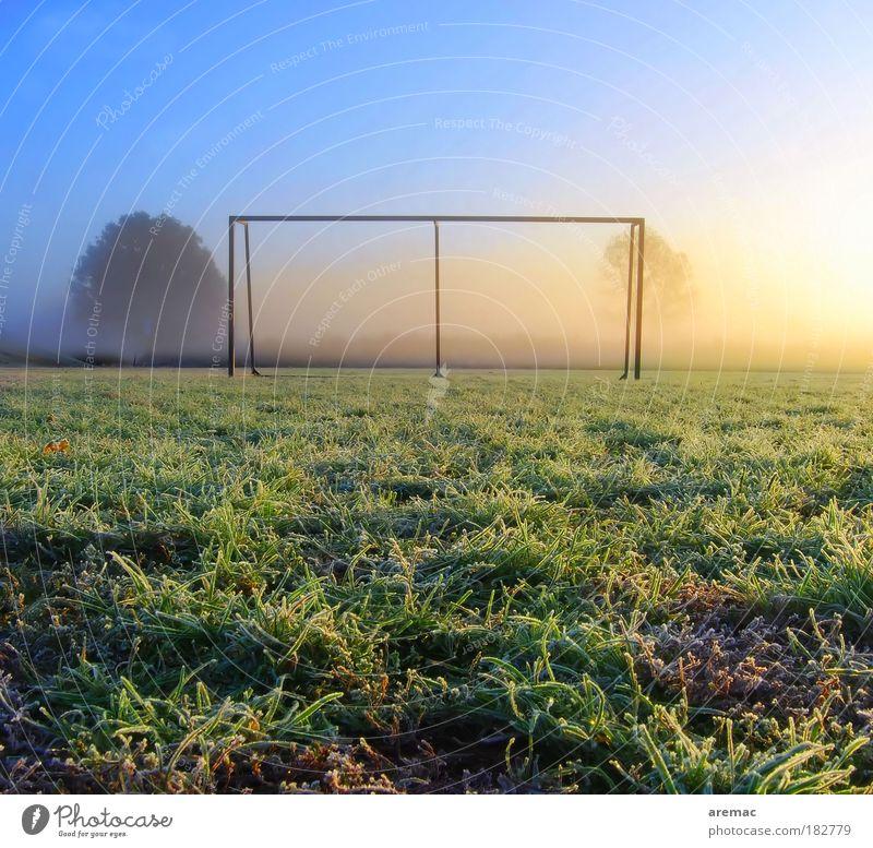 Frostball Natur blau grün Wiese Herbst Landschaft Sport Spielen Gras Eis Morgen Feld Freizeit & Hobby Sonnenaufgang Gegenlicht