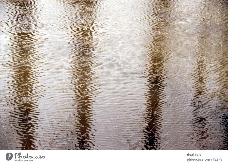 Spreewald Wasser Baum Wellen Fluss