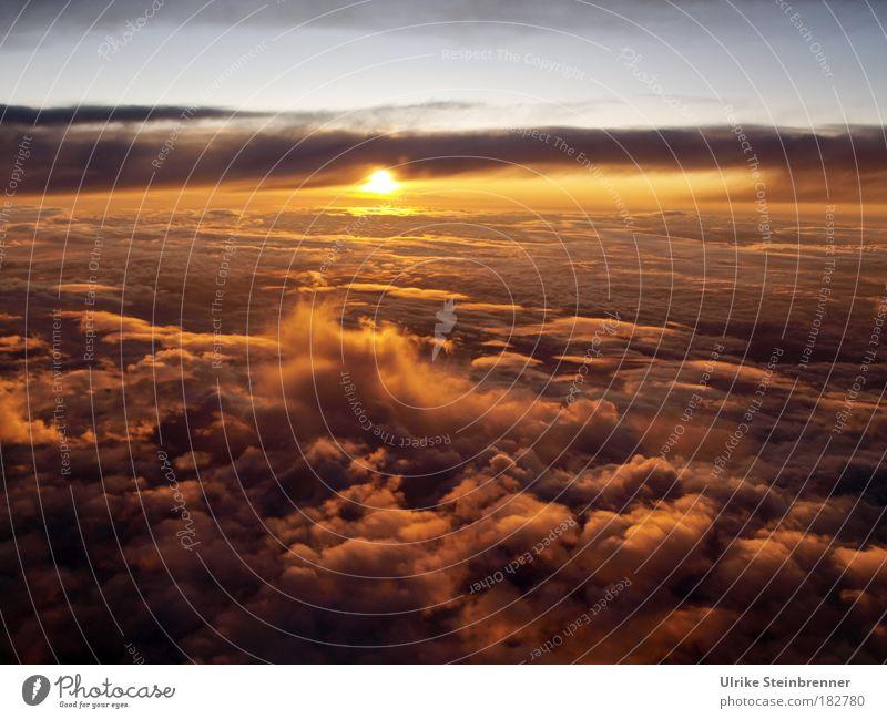 Sonnenuntergang beim Flug über Wolkenmeer Natur Himmel Sonnenlicht Luftverkehr fliegen glänzend Wärme weich Abschied orange gold Helios Stern Strahlungsenergie