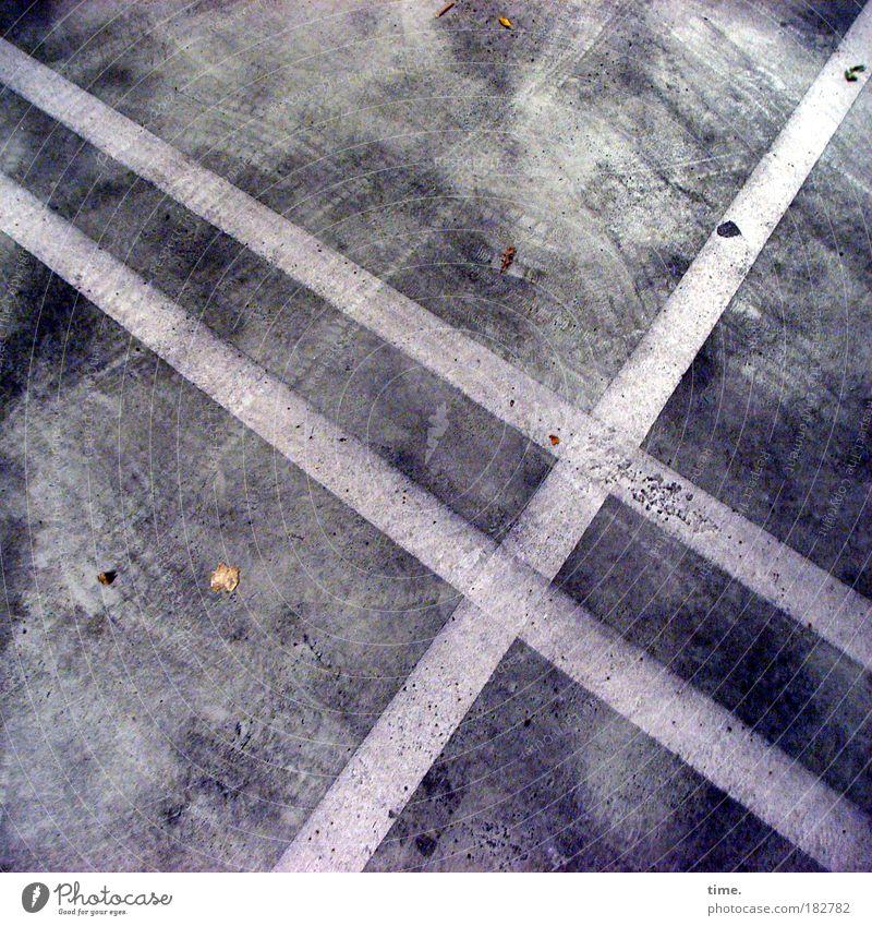 Kellergeister Blatt Herbst dreckig Beton Perspektive KFZ Bodenbelag Streifen Flucht Garage Gesetze und Verordnungen Parkhaus parallel Fahrbahn Spuren