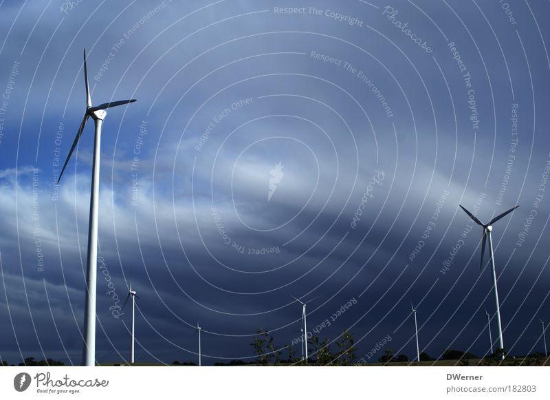 sauberer Strom aus Brandenburg Natur Landschaft Himmel Wolken Klima Klimawandel Wetter Wind Sturm Baum drehen fliegen blau Energie entdecken Erde Umwelt