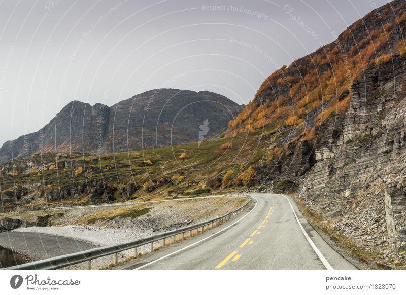 orientierung | immer an der wand lang Natur Ferien & Urlaub & Reisen Landschaft Berge u. Gebirge Straße Wand Herbst Küste Seeufer fahren entdecken Bucht herbstlich Autofahren Norwegen Straßenverkehr