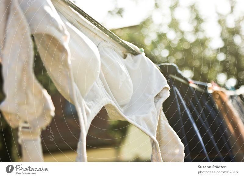 Oma`s Secret weiß Haus Garten Bekleidung Sauberkeit T-Shirt Stoff hängen Bikini Wäsche waschen trocknen Wäscheleine Unterwäsche abstrakt Klammer BH
