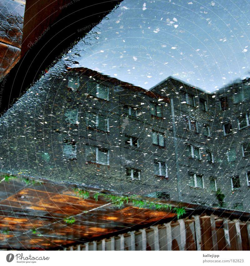 plattenteller Wasser Stadt Berlin Wand Fenster Stein Mauer Regen Beton Fassade trist Häusliches Leben DDR Pfütze Plattenbau Reflexion & Spiegelung