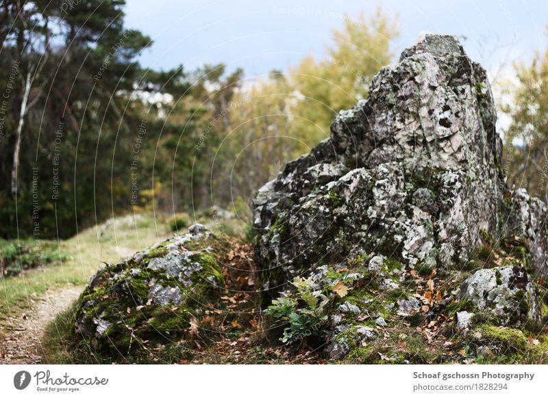 Steiniger Weg am Pfahl Natur Ferien & Urlaub & Reisen Stadt Sommer Baum Landschaft Erholung Wald Herbst Freiheit Felsen Tourismus Freizeit & Hobby Wetter