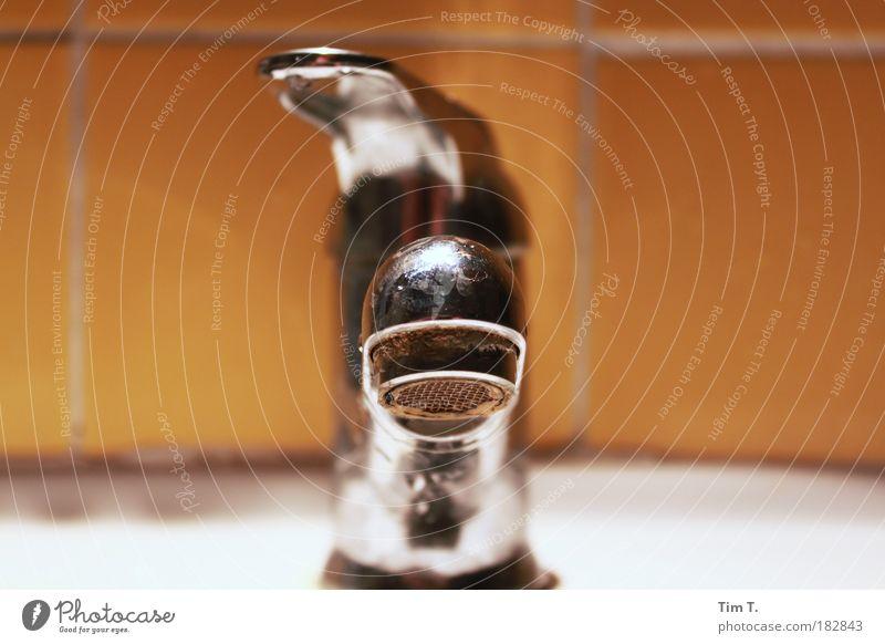 der Hahn Wasser Metall Kitsch Stahl Umweltschutz Gießkanne Krimskrams Sammlerstück
