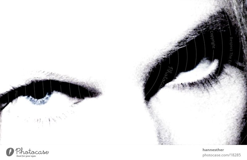 augen Frau Mensch Gesicht feminin verrückt Wimpern Augenbraue Stirn
