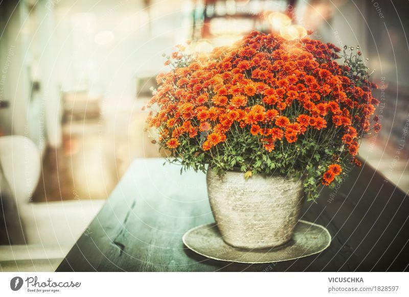 Herbst Blumen Dekoration in Wohnzimmer Lifestyle Reichtum Stil Design Leben Häusliches Leben Wohnung Innenarchitektur Dekoration & Verzierung Tisch Natur