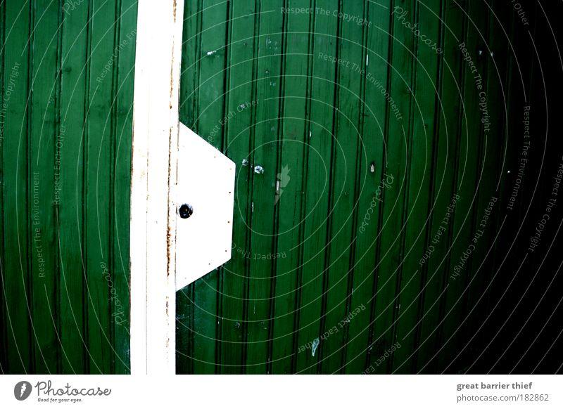 Grünweisst Farbfoto Außenaufnahme Nahaufnahme Muster Strukturen & Formen Menschenleer Tag Kontrast Holz Sauberkeit grün weiß Wand Garage Farbe Schloss Linie Tor