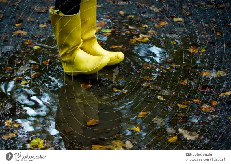 Gelbe Gummistiefel Freizeit & Hobby Ausflug Abenteuer Umwelt Natur Wasser Herbst Wetter schlechtes Wetter Regen authentisch trendy nass natürlich gelb Freude