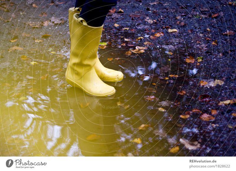 die gelben Gummistiefel feminin Fuß 1 Mensch Herbst Wetter schlechtes Wetter Blatt Wasser stehen trendy nass Freude Lebensfreude Pfütze Farbfoto Außenaufnahme