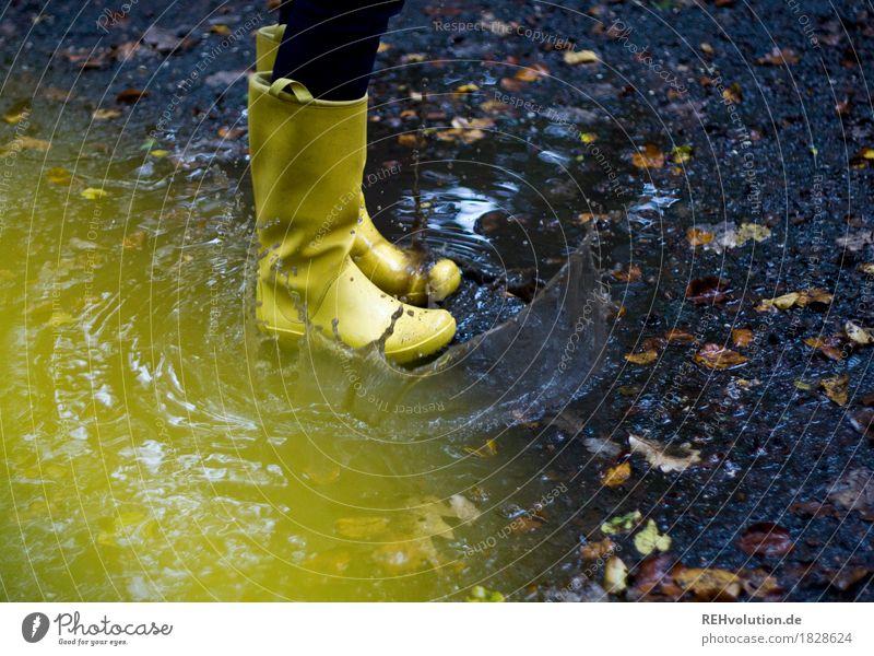 patsch Mensch Junge Frau Jugendliche Fuß 1 Umwelt Natur Herbst Wetter schlechtes Wetter Regen dreckig dunkel nass Freude Glück Lebensfreude Pfütze Blatt