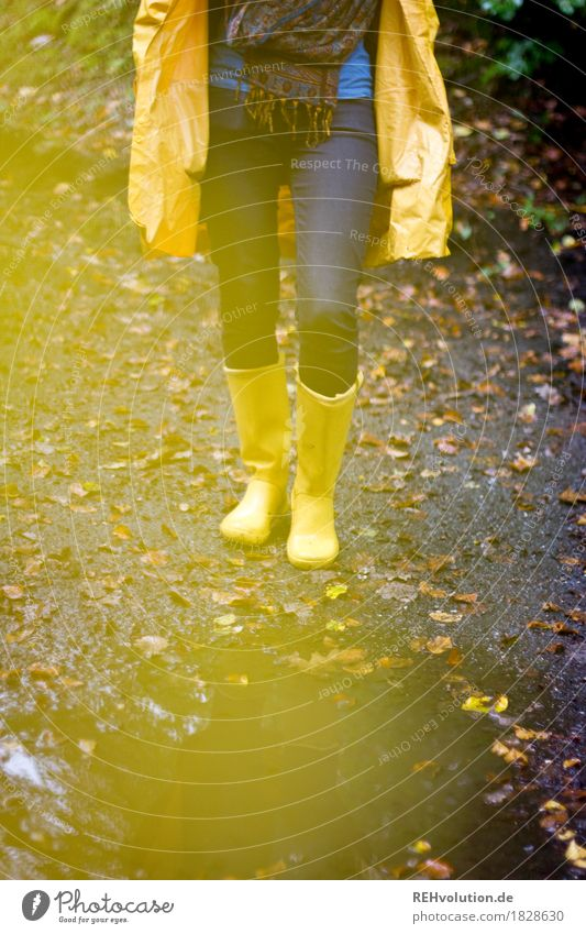 Jule | im Regenmantel Mensch feminin Junge Frau Jugendliche Beine 1 18-30 Jahre Erwachsene Umwelt Natur Landschaft Herbst Wetter schlechtes Wetter Wald