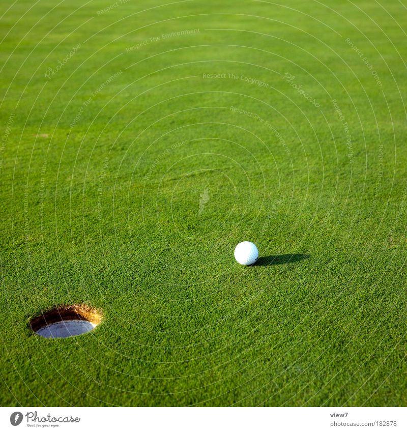 Login Natur grün Erholung Umwelt Wiese Landschaft Sport Spielen Gras klein Glück Stimmung Park Zufriedenheit Freizeit & Hobby elegant