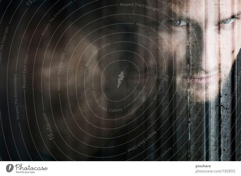 Fensterbilder sind die neuen Pfützenbilder Mann schön Porträt Gesicht Auge Blick dunkel Mensch Erwachsene maskulin Coolness geheimnisvoll Jalousie Experiment