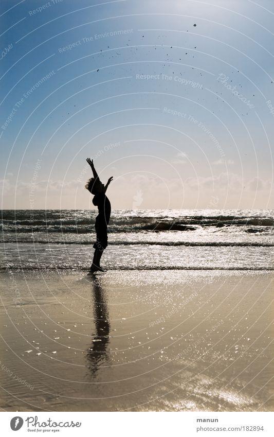 unbeschwert Kind Himmel Natur Jugendliche Sonne Meer Freude Sommer Strand Herbst Leben Landschaft Freiheit Junge Glück Sand