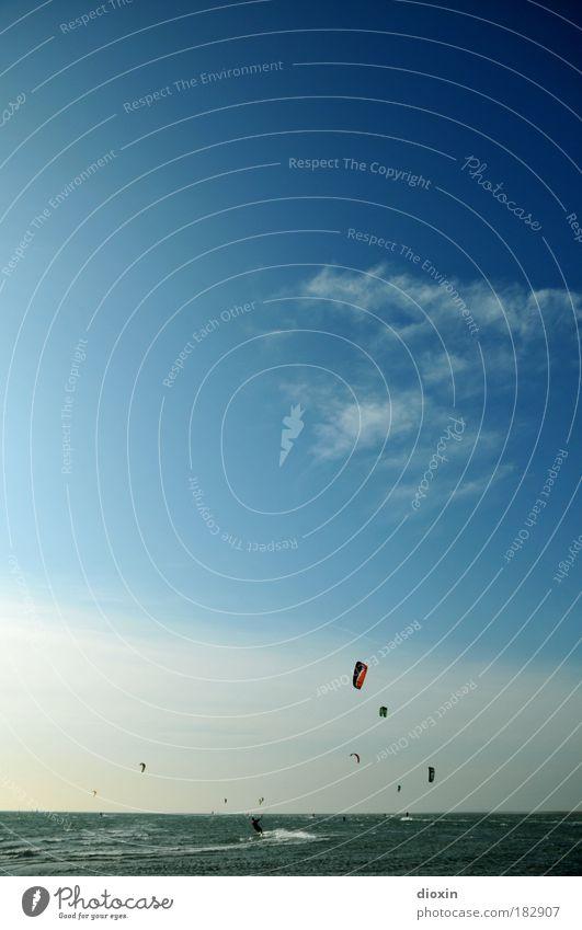 Surfin´ Birds Mensch Himmel Wasser Ferien & Urlaub & Reisen Meer Wolken Sport Freiheit Menschengruppe Wellen Wind Freizeit & Hobby hoch Geschwindigkeit